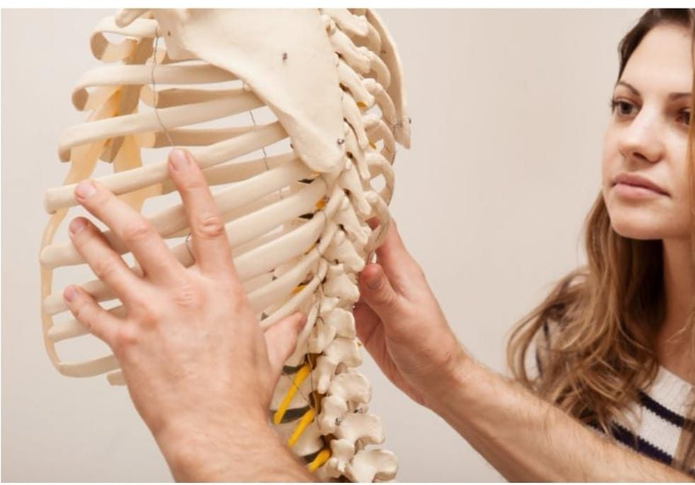 Mills Chiropractic is certified work Injury pain experts.